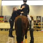Demo op Flanders Horse Expo.